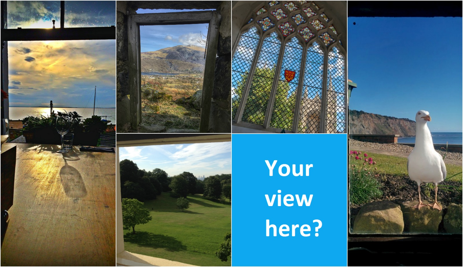collage of myglazing.com window with a view finalists from 2016