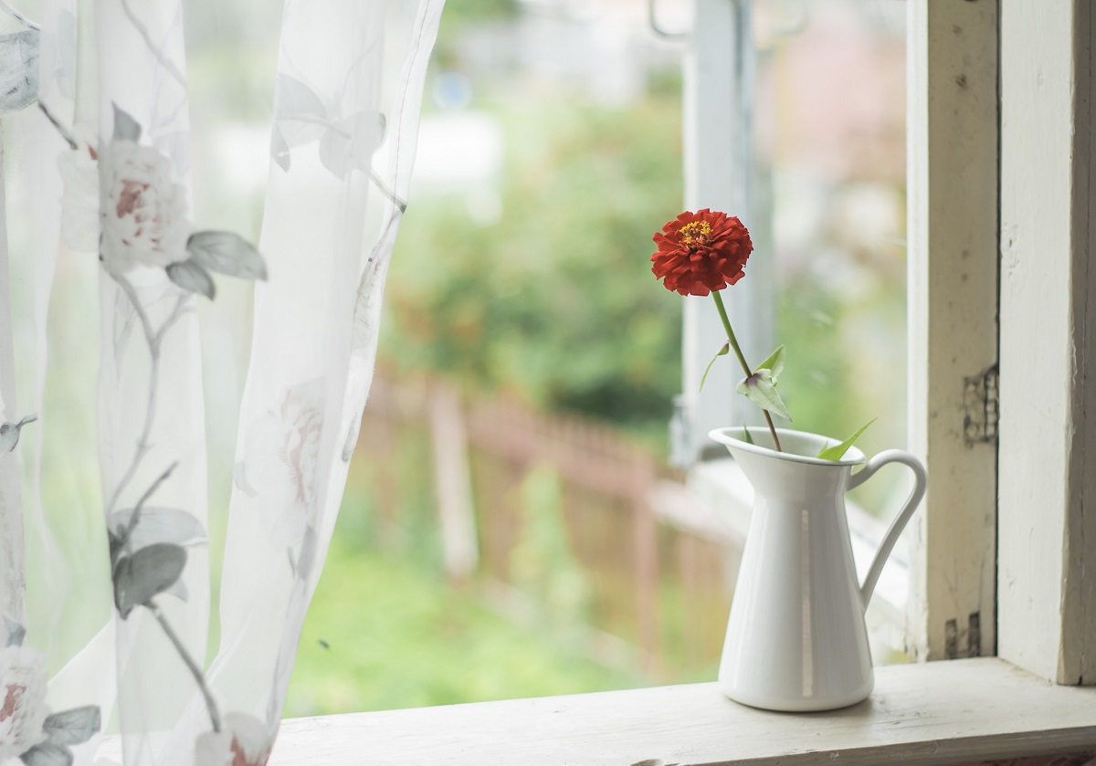 window open jug with flower on windowsill
